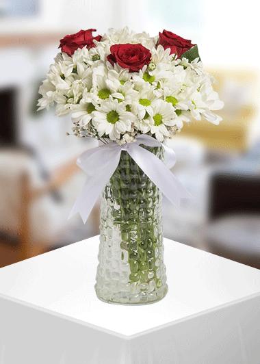 3 Gül Papatya Gaziantep Çiçek Gönder