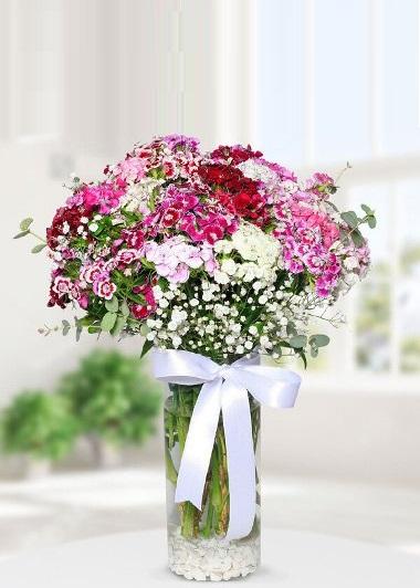 Bahar Neşesi Gaziantep Çiçekciler