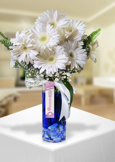 Beyaz Gerberanın Zerafeti-83 Gaziantep Çiçekciler