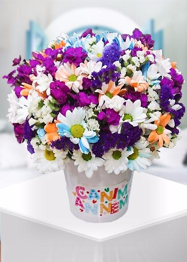Canım Annem Renkli Papatyalar Gaziantep Çiçek Sepeti Siparişi