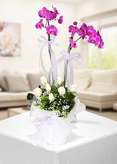 Her Gün Yanındayım -64 Gaziantep Çiçekciler