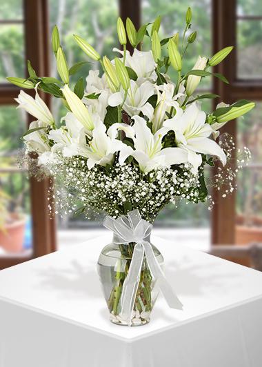 Kar Beyaz-24 Gaziantep Çiçekciler
