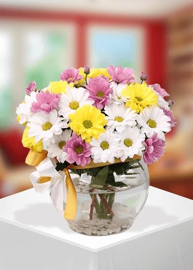 Kır Çiçekleri Gaziantep Çiçek Sepeti Siparişi