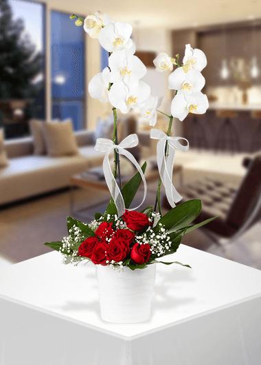 Orkide ve Gülün Zerafeti-66 Gaziantep Çiçekciler