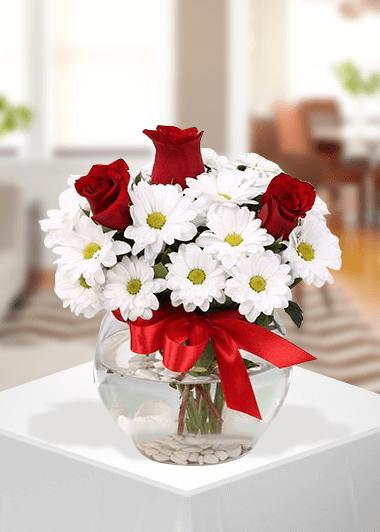Papatya ve 3 gül Gaziantep Çiçek Sepeti Siparişi