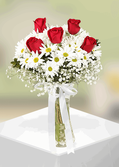 Papatya ve 5 gül-14 Gaziantep Çiçek Sepeti Siparişi