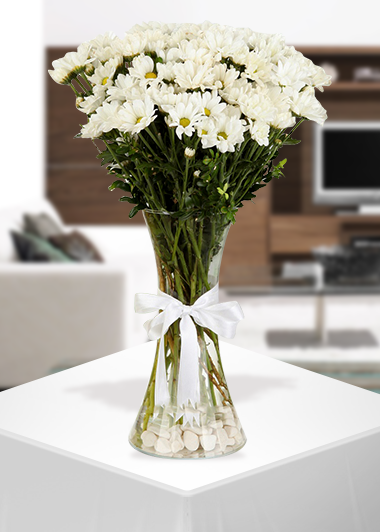 Papatyam-21 Gaziantep Çiçekciler