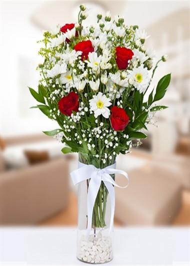 Vazo İçinde Papatya 5 Gül Gaziantep Çiçekciler
